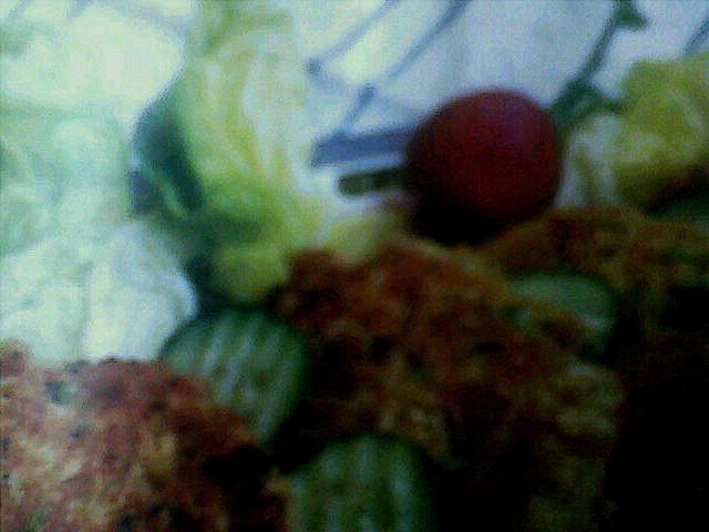 Pljeskavice od povrća