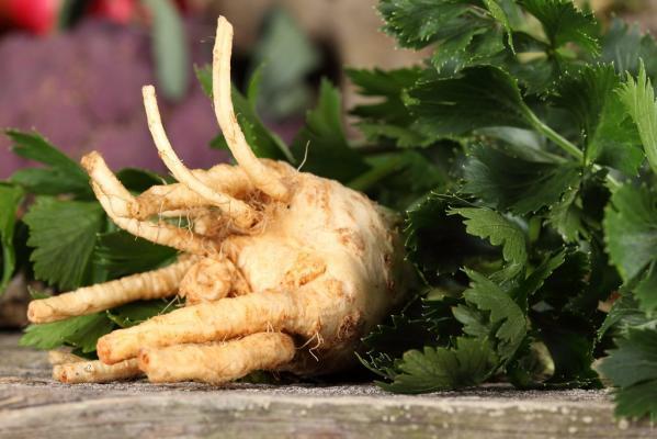 Tortice od celera