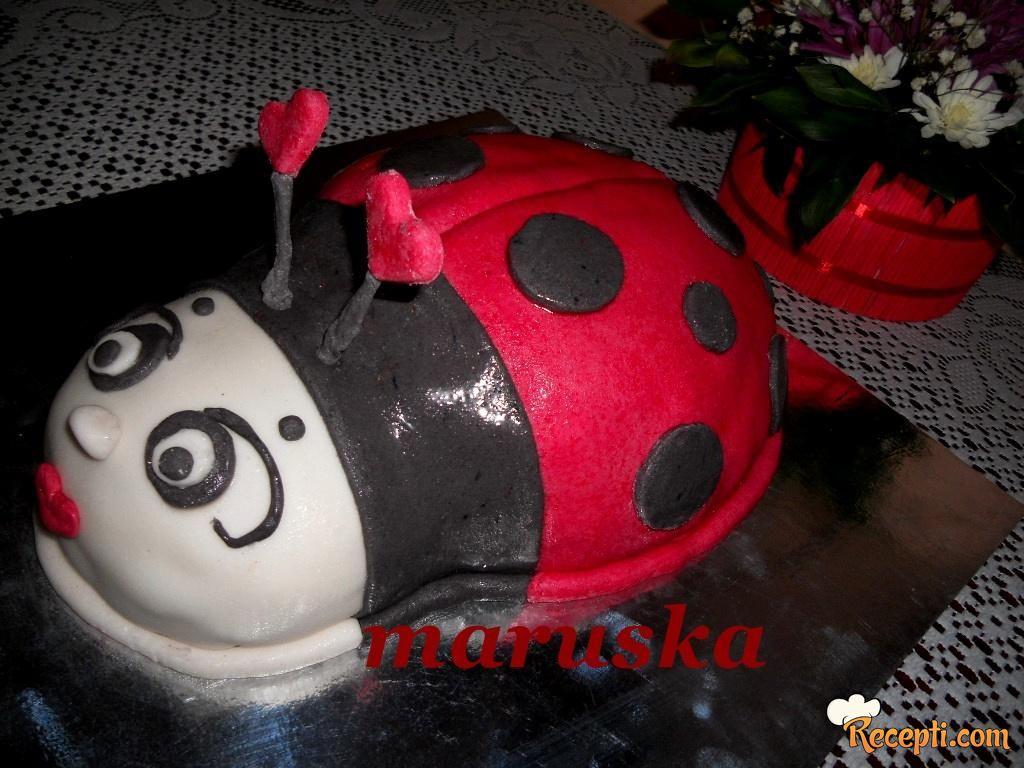 Plazma torta - Bubamara