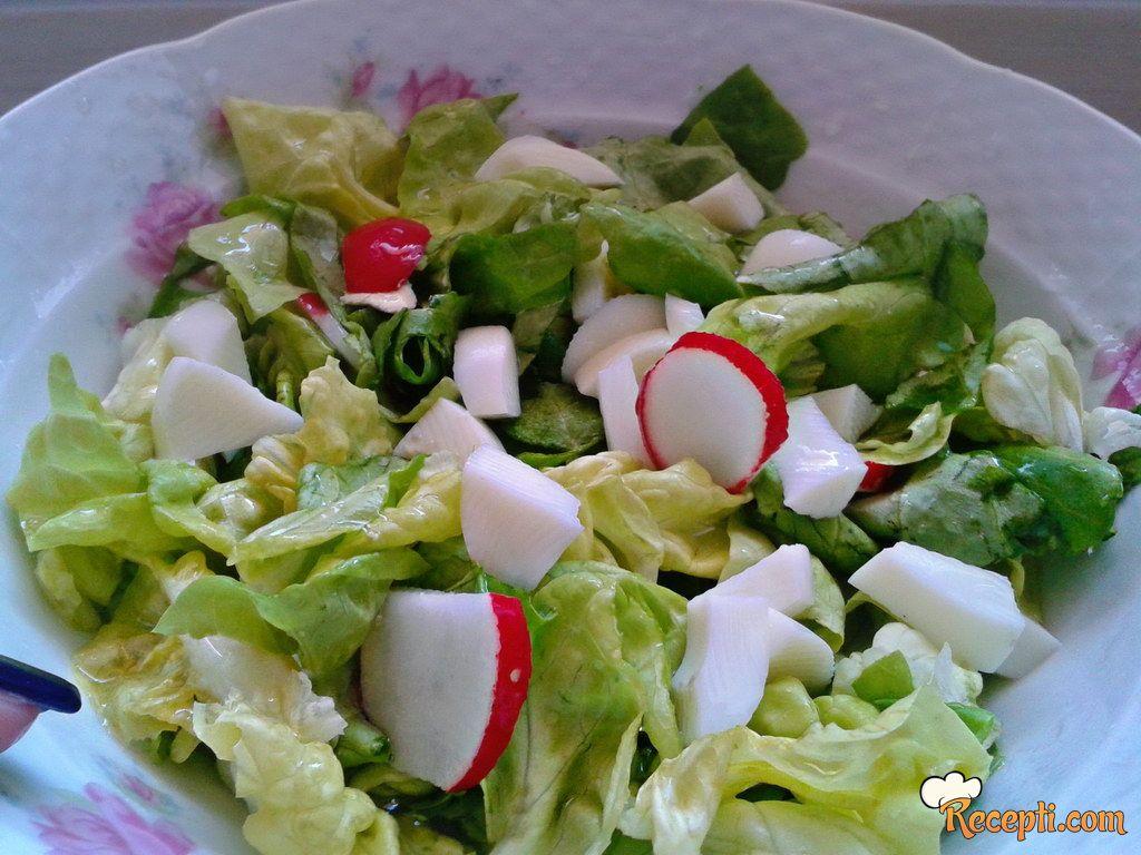 Zelena salata sa jajima i rotkvicama