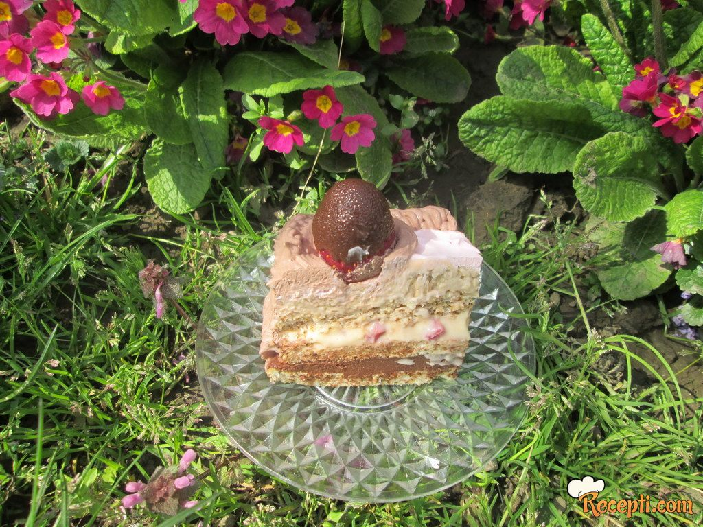 Voćna interkontinentalna torta
