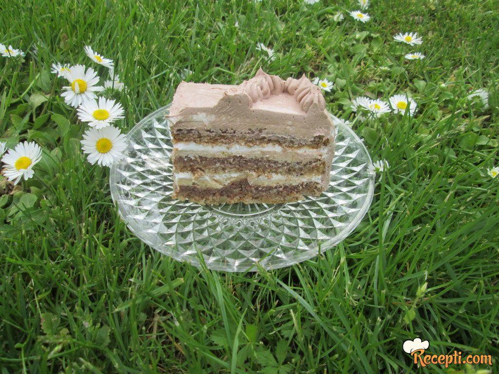 Čoko plazma torta (3)