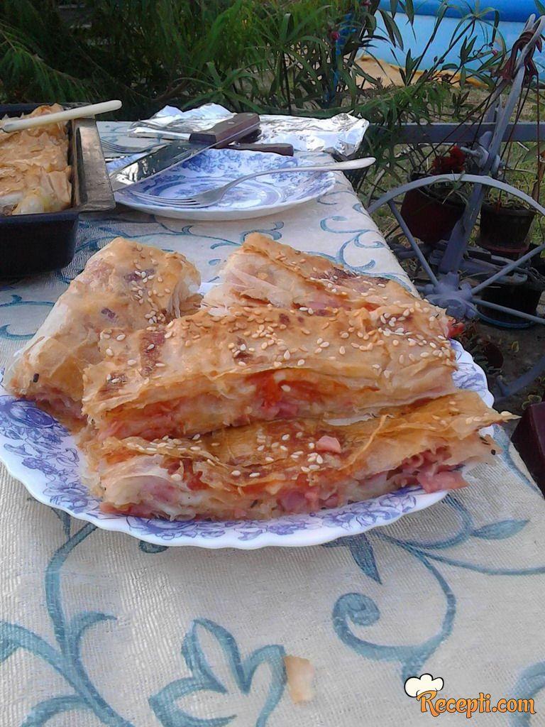 Pica pita (5)