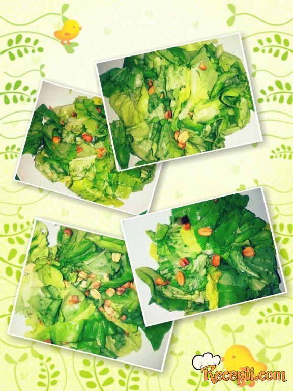 Zdrava zelena salata