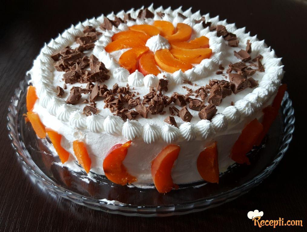 Torta sa kajsijama (6)