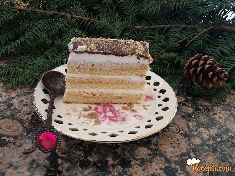 Plazma torta (20)