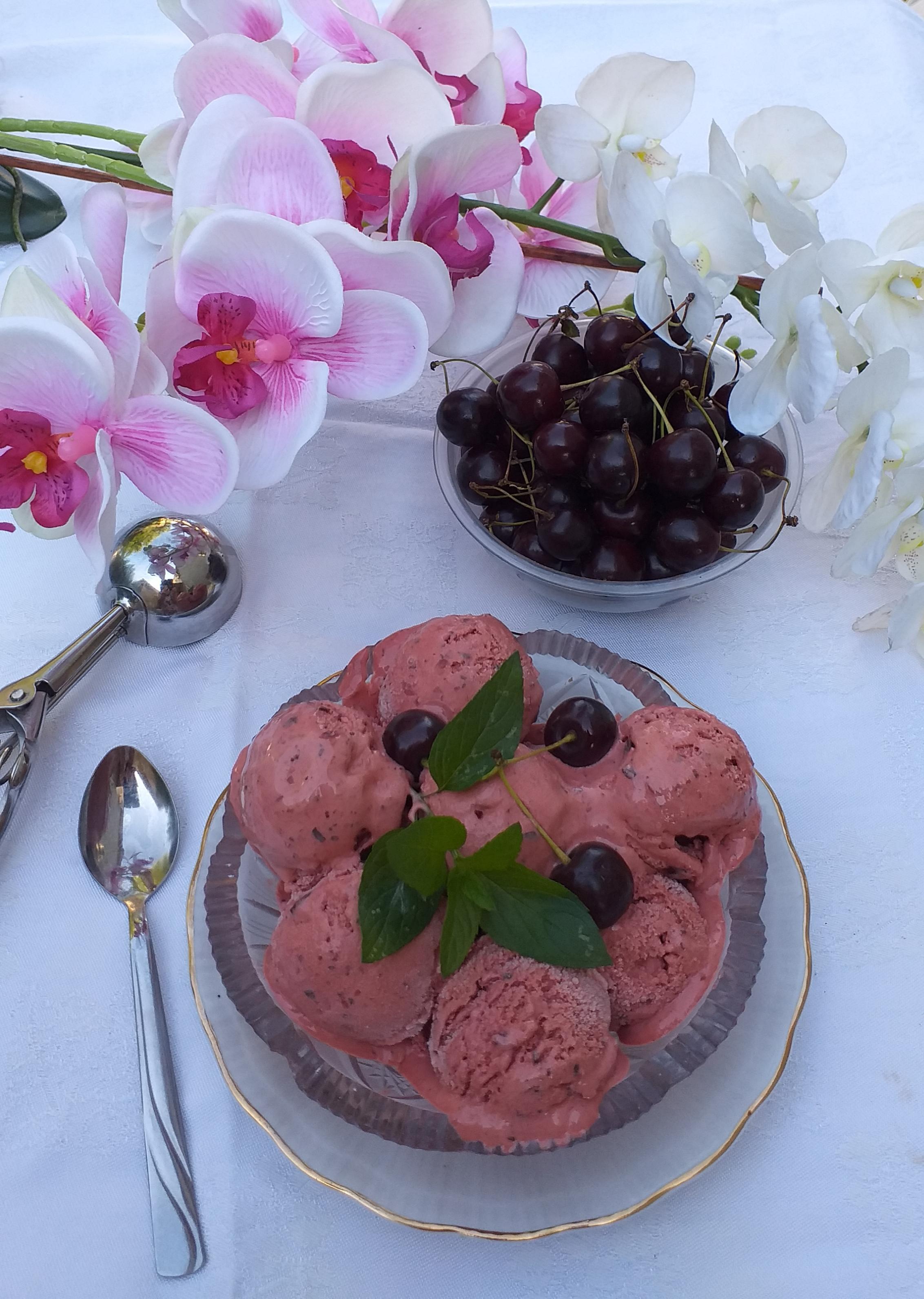 Domaći sladoled sa višnjama